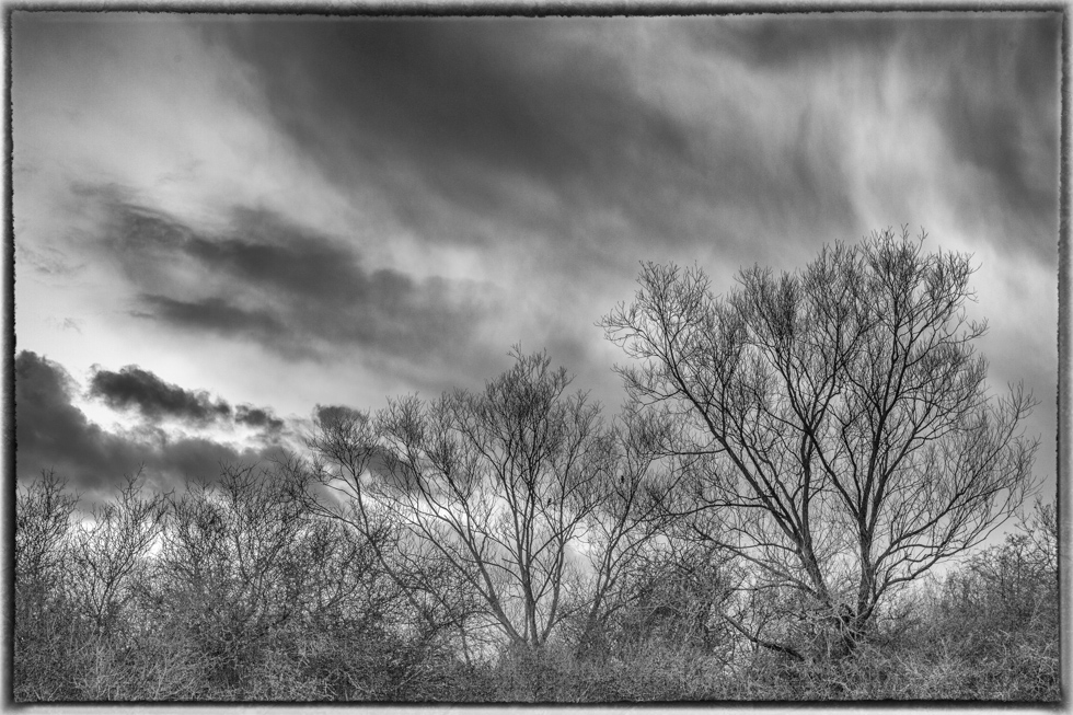 Winter Cloudscape, Epsom Stew Ponds, Surrey