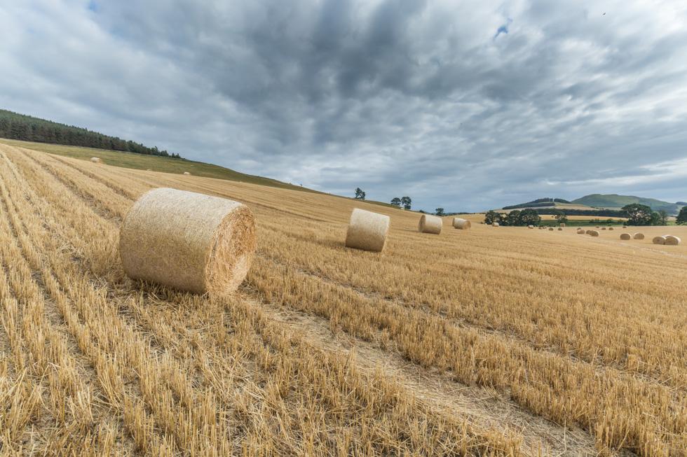 Hay Bales, Northumberland