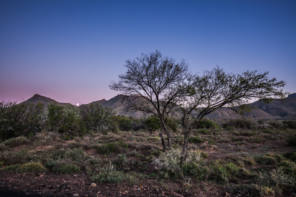 Full Moon Setting, Karoo National Park, South Africa