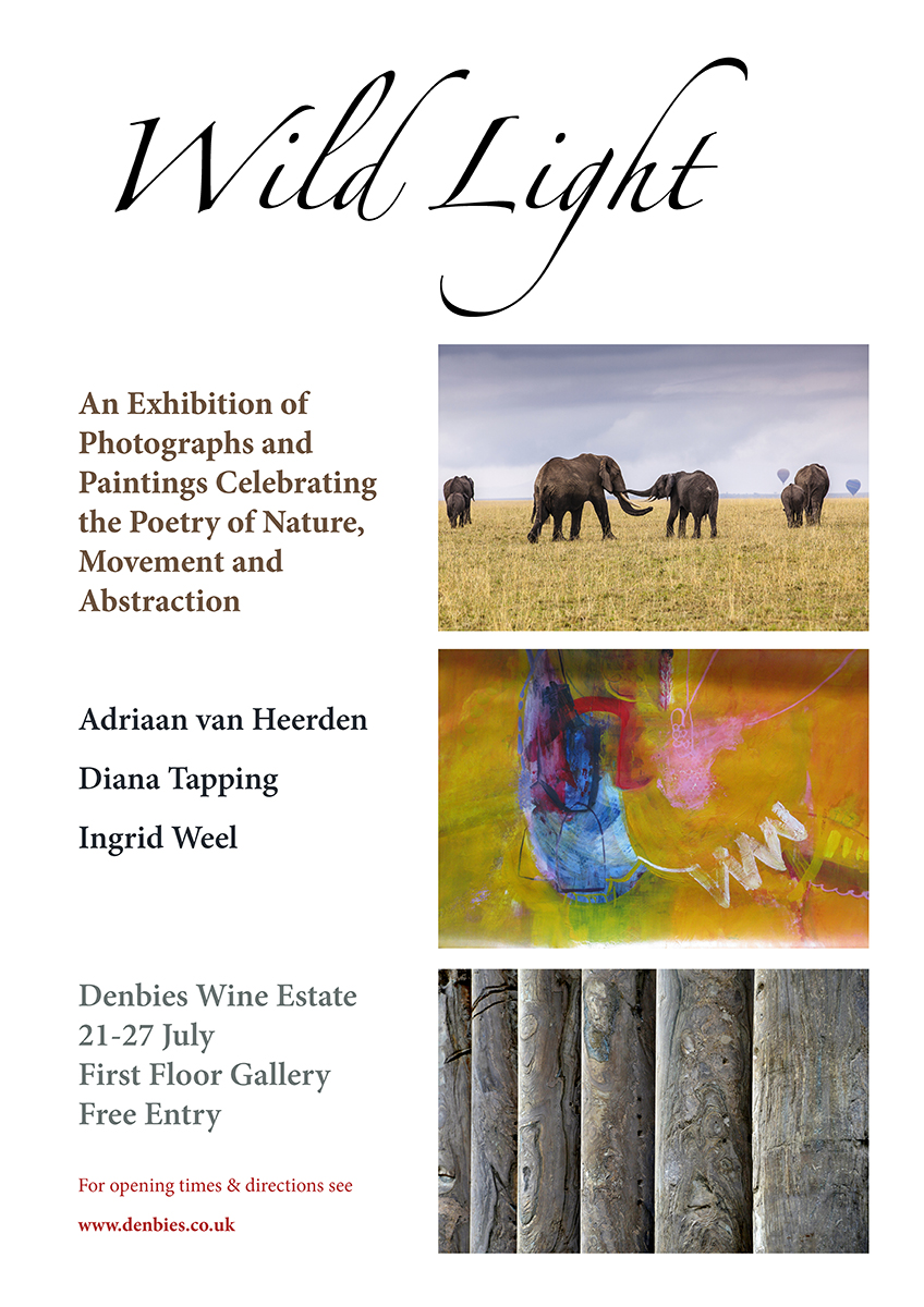 Wild Light: An Exhibition of Photographs and Paintings Celebrating the Poetry of Nature, Movement and Abstraction