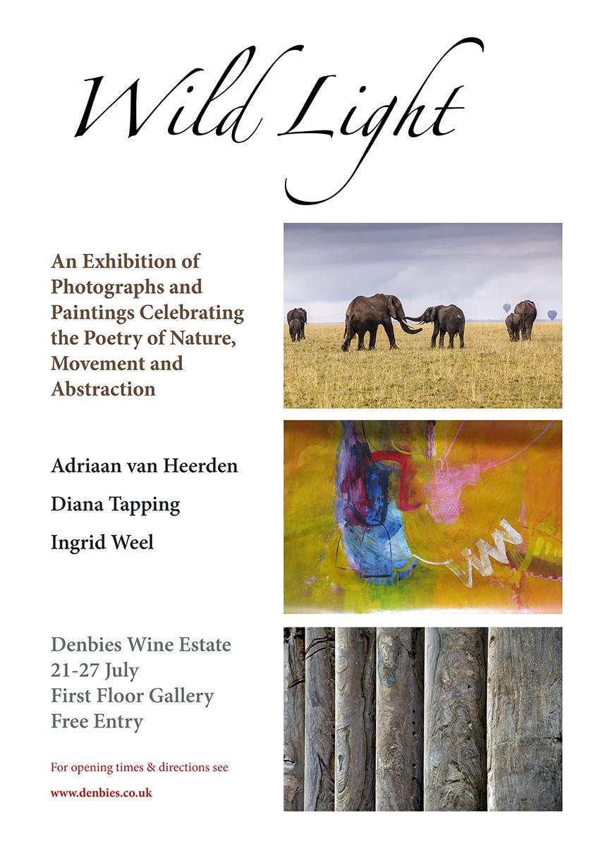 Wild Light Exhibition