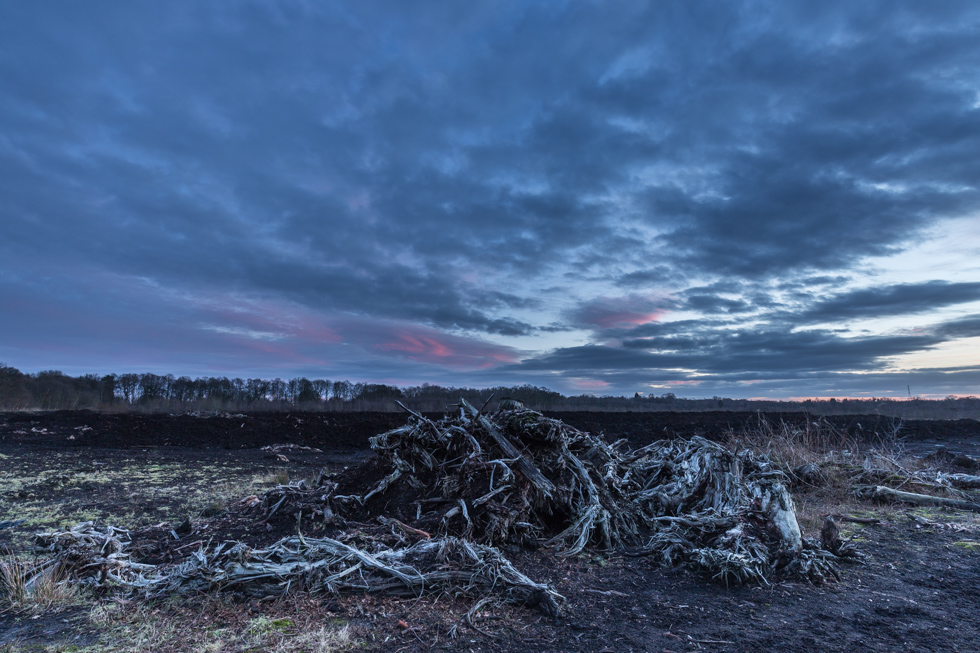 Sunrise, Lindow Common, Cheshire, UK
