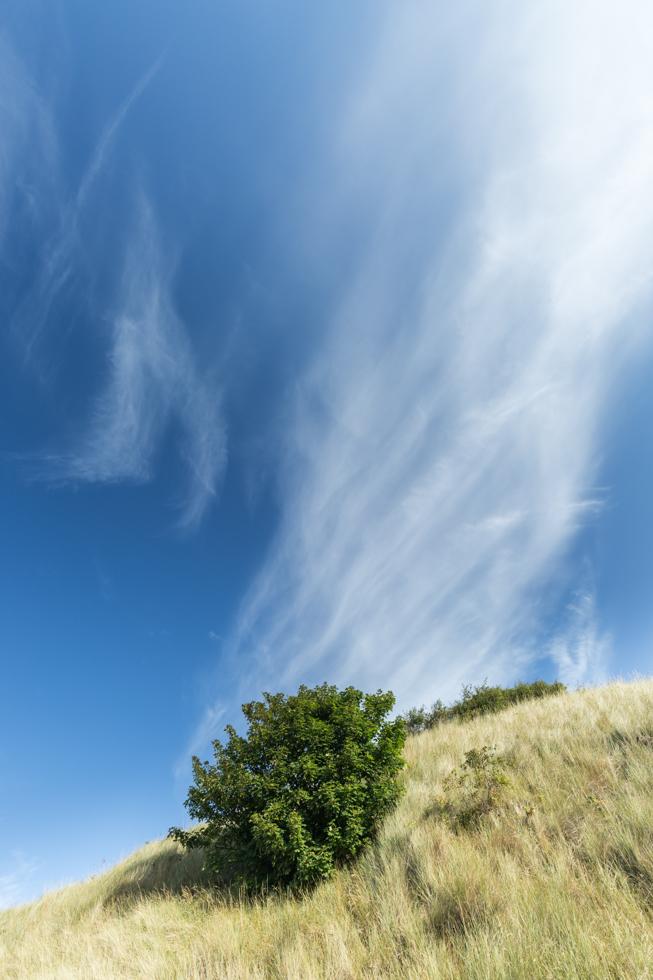 Dune and Sky, Bamburgh, Northumberland