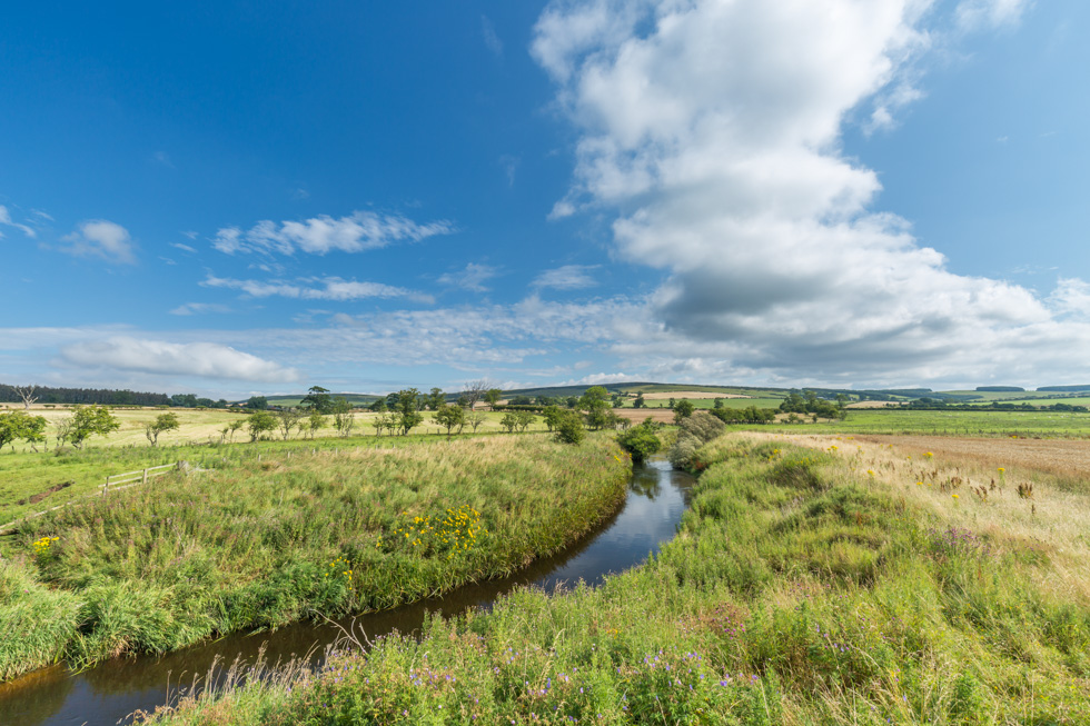 The River Till, Northumberland