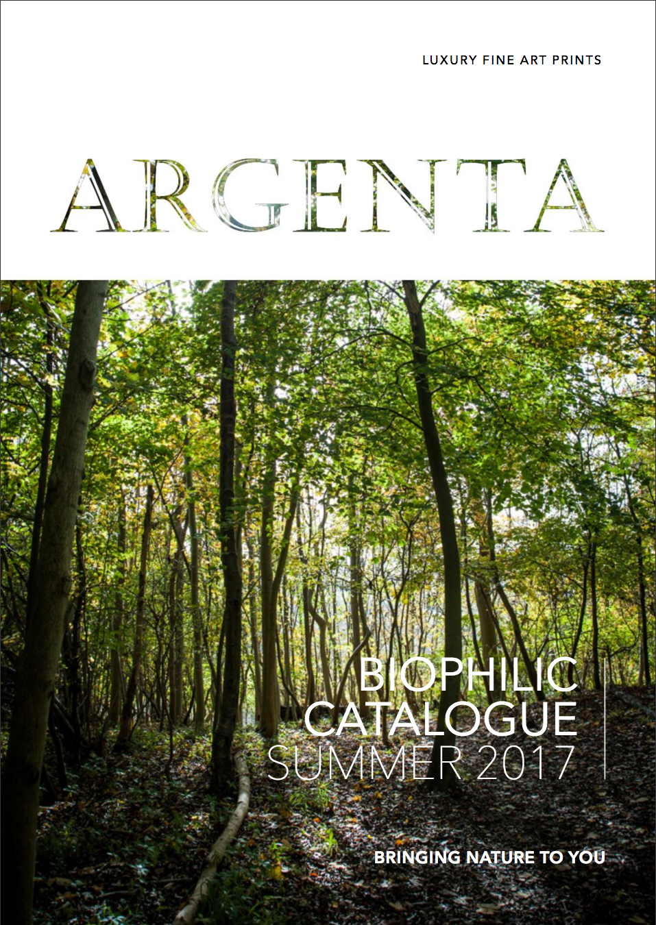 New ARGENTA Creative Catalogue