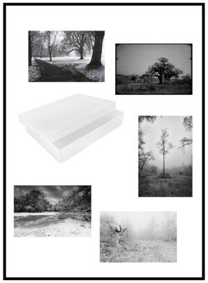 10 art cards with reusable plastic box